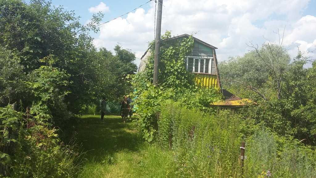 Продажа  дома садоводческое товарищество заря