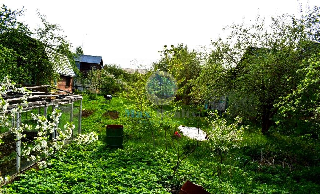 Купить земельный участок: д Жабкино, обл Московская