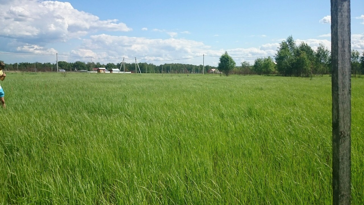 продажа сельскохозяйственных земель в московской области вспомнил