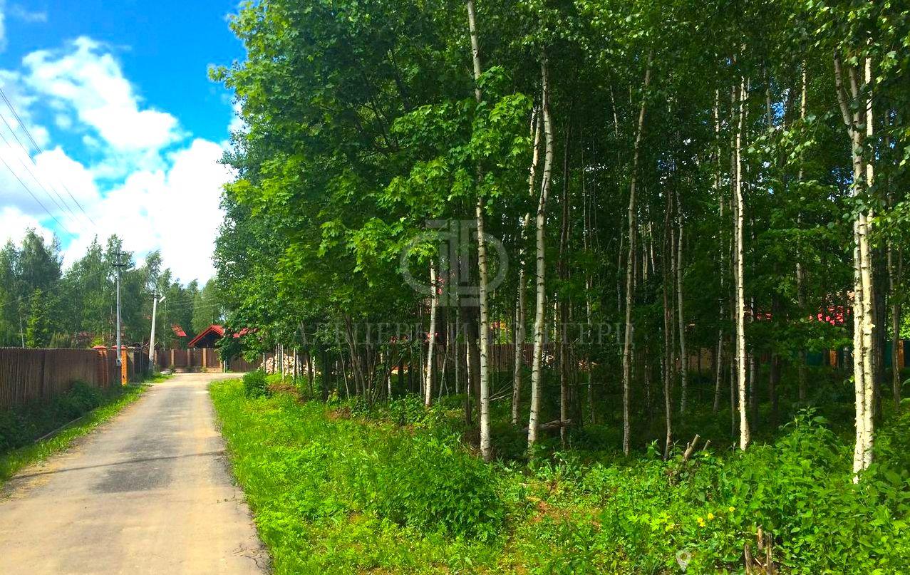 земельные участки в лесу