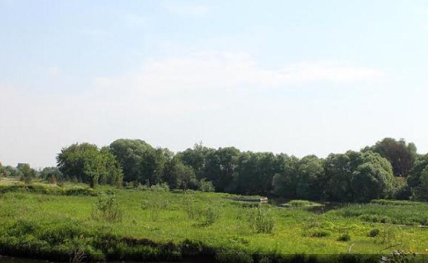 Land на продажу по адресу Россия, Московская область, Раменский район, Софьино