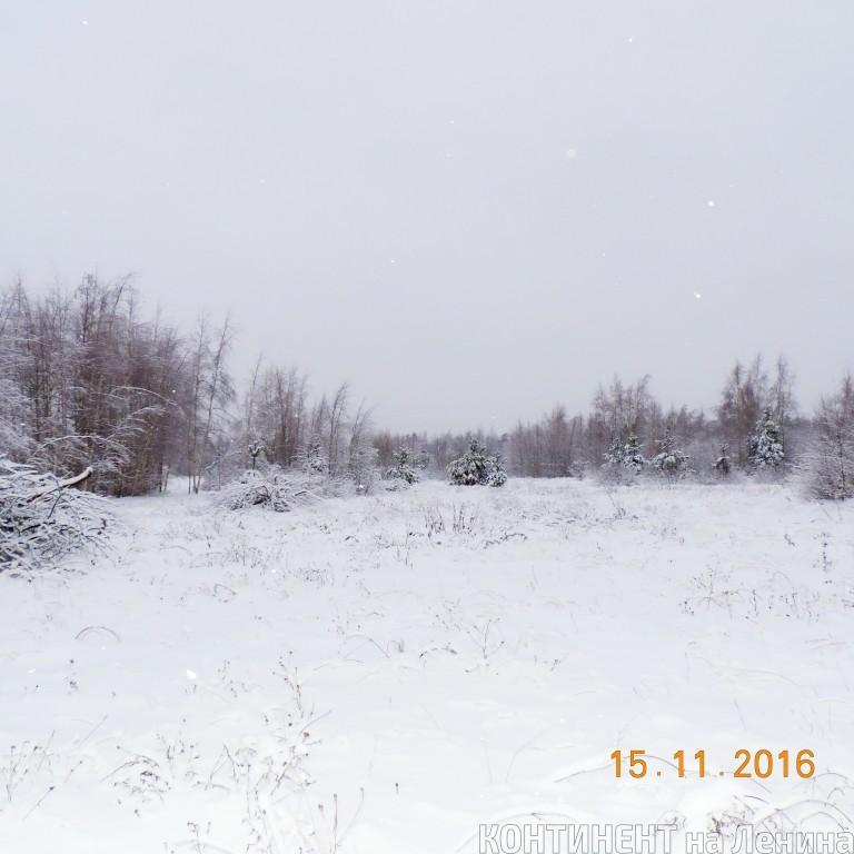 Продам дом по адресу Россия, Ярославская область, Мышкинский район, Золотуха фото 2 по выгодной цене